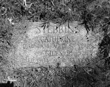 Catherine Fish and Giles Stebbins Grave Site